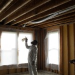 Application of biocide to joists of residence