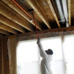 Scrubbing of joists after biocide application