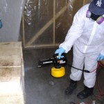Mold remediation of brick using fogging machine