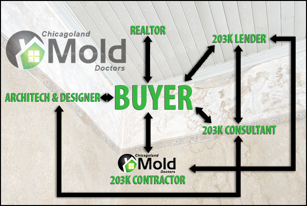 FHA 203K Contractor Mold Remediation Diagram by Chicagoland Mold Doctors