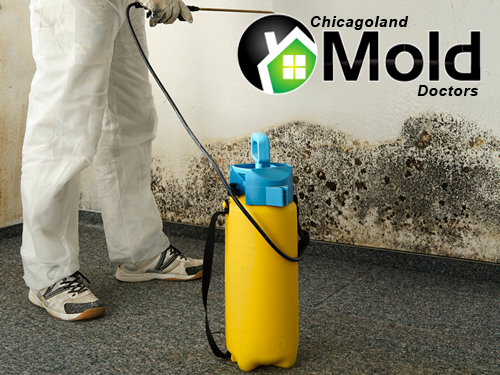 Vernon Hills Mold Remediation by Chicagoland Mold Doctors.